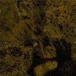 Light-of-darkness204x140