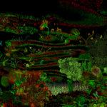 mostra10-garden